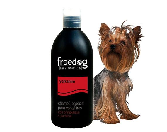shampoo cani piccola taglia